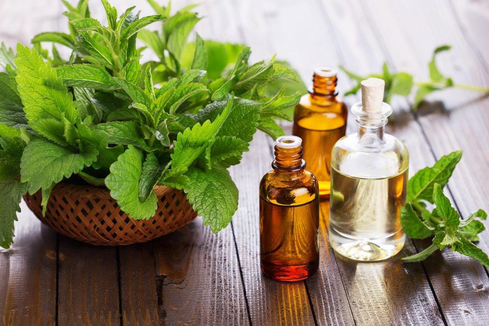 Symptom Guide & Profiles of Essential Oils (4/6)